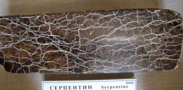 Камень серпентинит фото